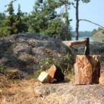 hacha bosque