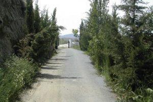 El Camino al Cementerio - Historias de Miedo Cortas