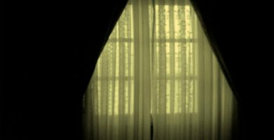 El Ventanal y el Jardín - Cuentos de Fantasmas